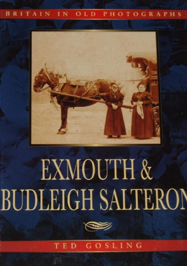 Exmouth and Budleigh Salterton, by Ted Gosling